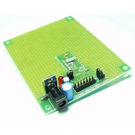 Prototype Board for MSP430F1121 - Large (Sale)
