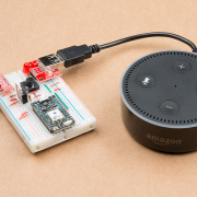 IoTuesday: Amazon Echo Kill Switch
