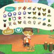 Animal Crossing Automation