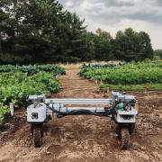 Building a Custom Solution for Farming