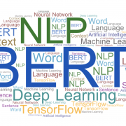 BERT Machine Learning Model and the RP2040 Thing Plus