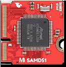 SAMD51 processor board