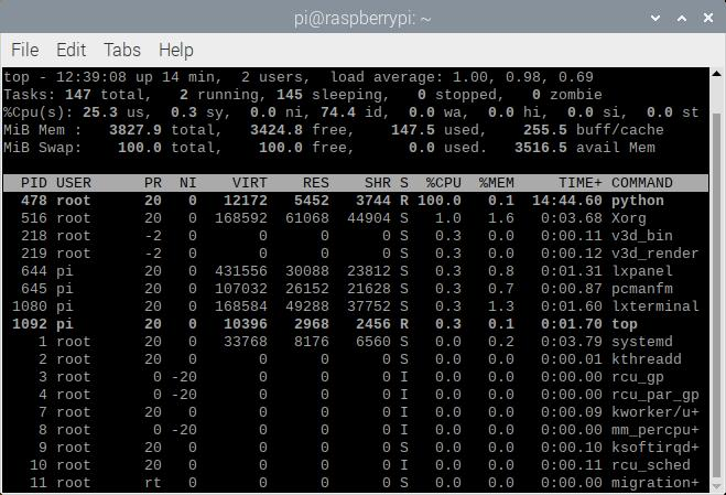 Raspberry Pi Processes Showing Python Process Taking up 100% of CPU