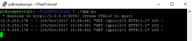 Output of the script run on the Raspberry Pi