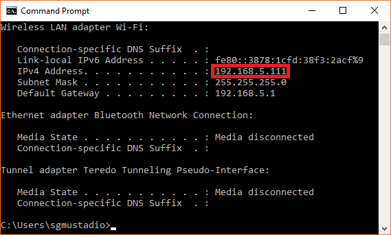 IP address assigned by the DHCP server on the Raspberry Pi