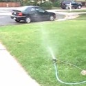 Lawn Sprinkler, Mixed Signal Layouts, and New Products