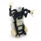 RFL Robot