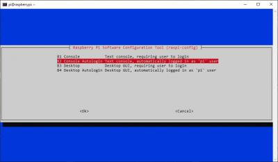 raspi-config Console Autologin option