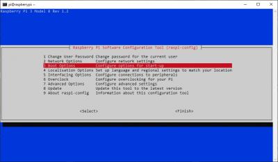 raspi-config boot options menu