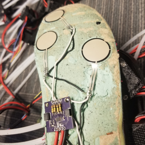 Weight Sensing Insole