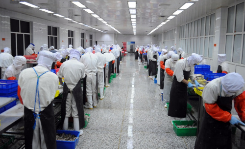 Hardware mass production line workers at their work tables
