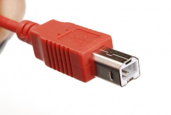 Male USB-B connector