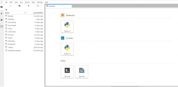 Screenshot showing Jupyter Notebook Launcher