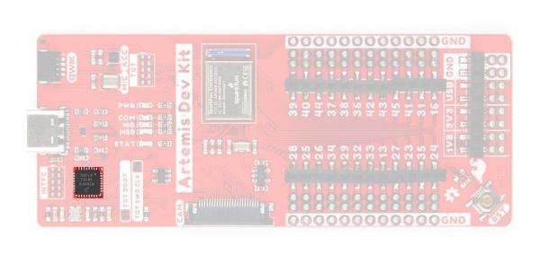 interface chip