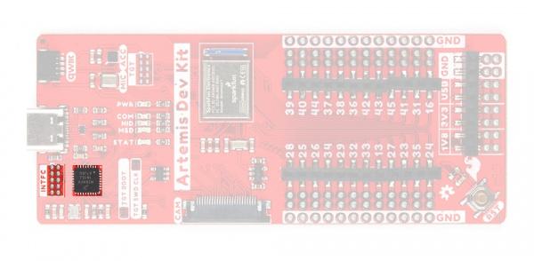 interface chip and JTAG pins
