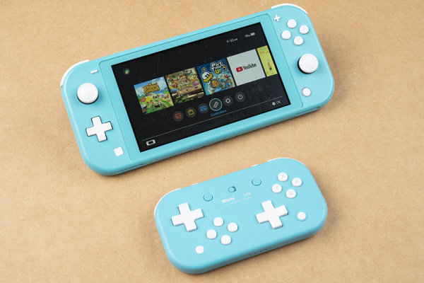 Controllers option from the main screen of the switch