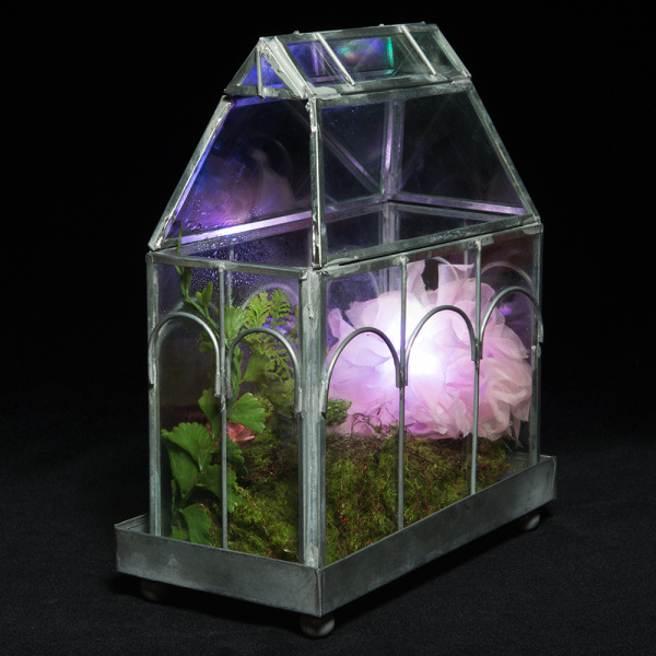Humidity-sensing flower in terrarium