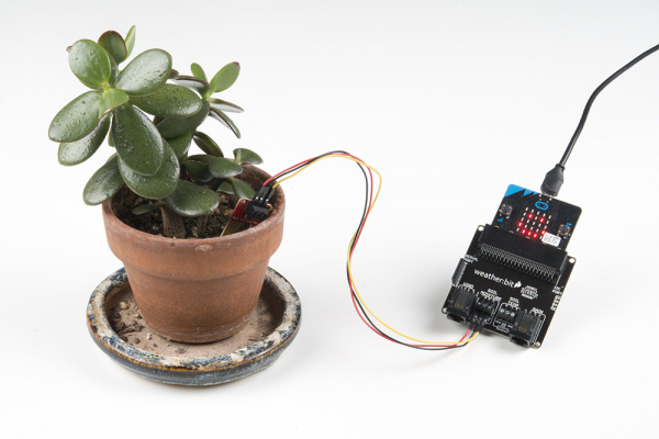 Exp3_FinalAssemblyPlant | moisture sensor in a plant and output