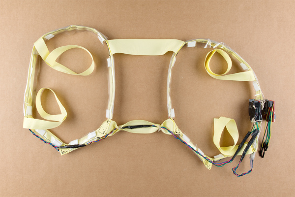 Harness with Motion Controller